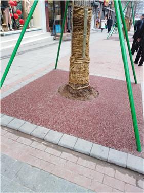 露骨料树圈